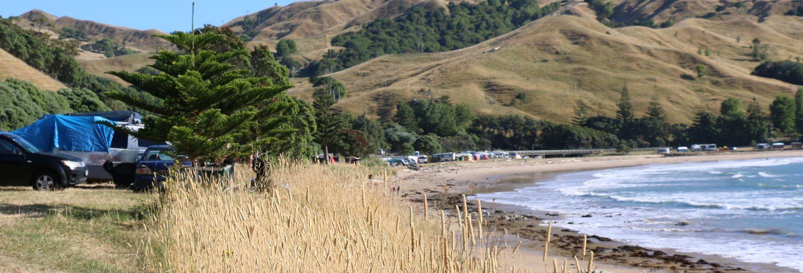 Turihaua Beach banner image